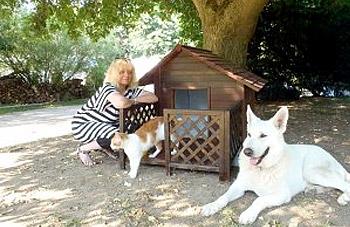 services a domicile chien et chat yvelines 78 et idf