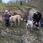 randonnées canines 78